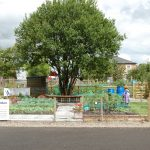 St Peters Allotment